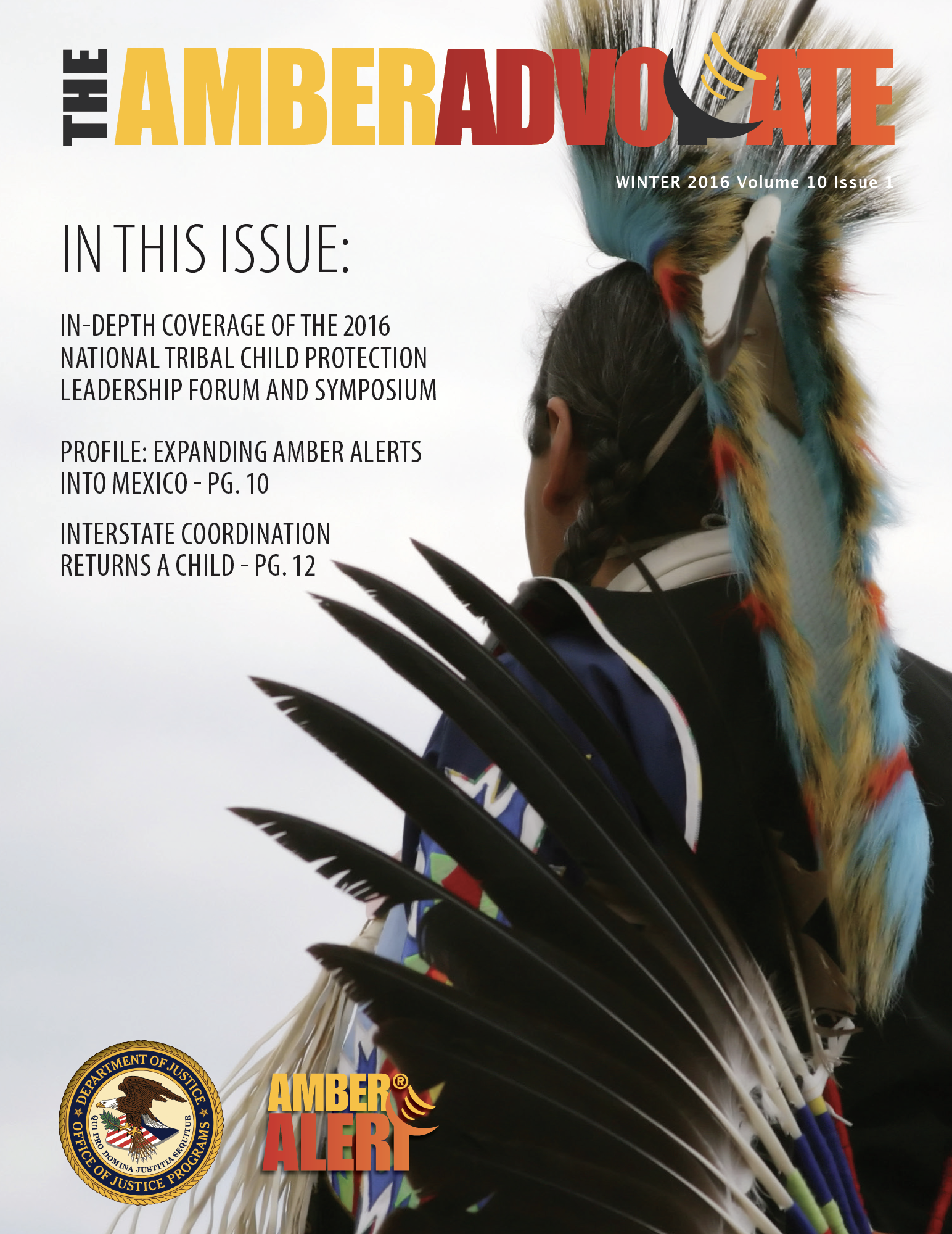AMBER Advocate 29 cover
